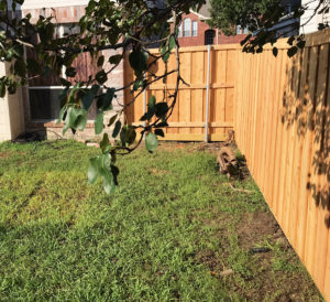 Fence Companies Frisco Board on Board Fence Wood Privacy Fence Frisco Metal Posts