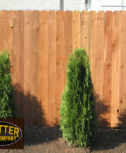 low cost cedar wood fence
