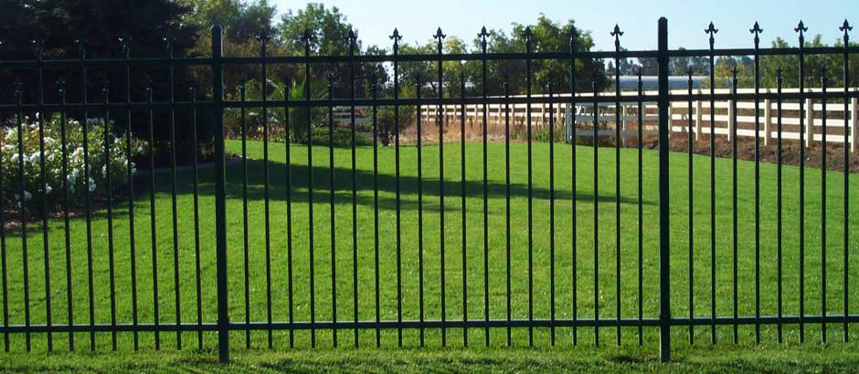 Rod Iron Fence Company Frisco | Metal Fences | Pool Fencing Companies Frisco
