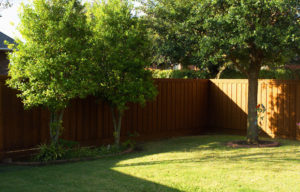 Premium Cedar Privacy Fences