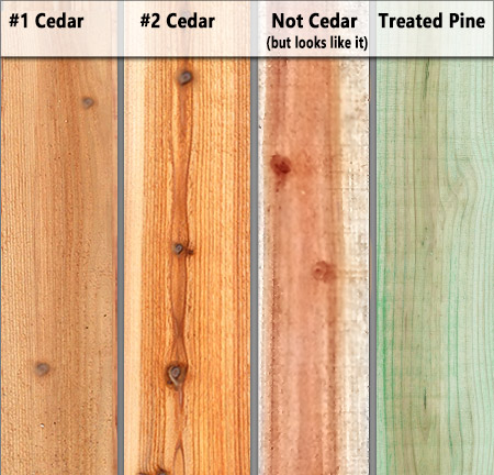 How to Tell The Difference Between Cedar and Other Wood